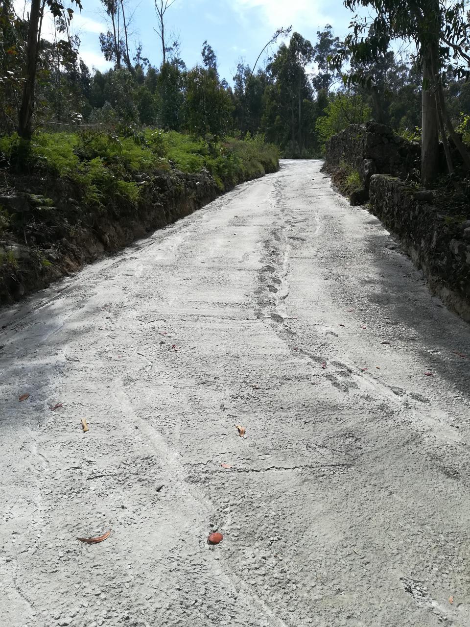 Subida de acesso ao monte em sobreiros, pavimentada.